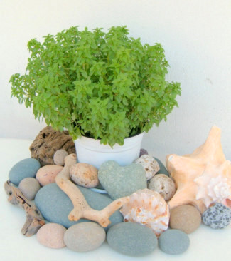 Beach stones cheap decorating ideas for cheap home decor for Cheap beach decorations for the home